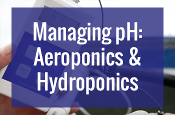 Managing pH in Hydroponics and Aeroponics Systems