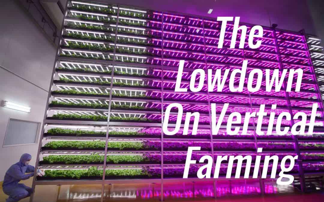 The Lowdown On Vertical Farming